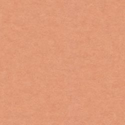 Notepad cardboard - seamless texture